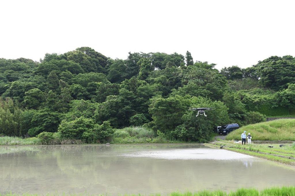 水稲直播で米づくりが行われる約8,500平方メートルの水田
